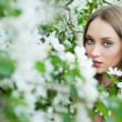 Girl in spring flowers — Stock Photo