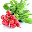 Fresh radish isolated on white background — Stock Photo