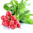 Stock Photo: Fresh radish isolated on white background