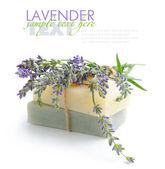 Savon artisanal et fleurs de lavande sur fond blanc — Photo