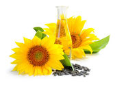 Sunflower oil with flower and by seed on white background — Stock Photo