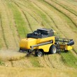 Combine harvester harvesting wheat cereal in farm — Stock Photo