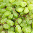 Green grapes — Photo