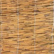 Cane texture — Stock Photo