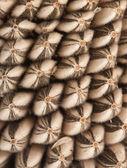 Modello di semi di girasole — Foto Stock