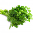Dill parsley to spices bunch isolated on white background — Stock Photo #11837507