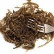 Laminaria and fork — Stock Photo #11837605