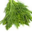 Bunch of ripe green dill isolated on white — Stok fotoğraf