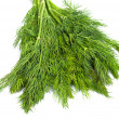 Bunch of ripe green dill isolated on white — Stock Photo