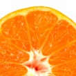 Orange as the background. macro — Stock Photo