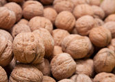 Brown raw walnuts textured background — Stock Photo