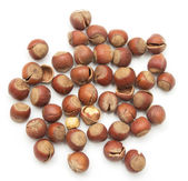 Heap of hazelnuts isolated on white background — Stockfoto