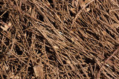 Straw as a background — Stock Photo