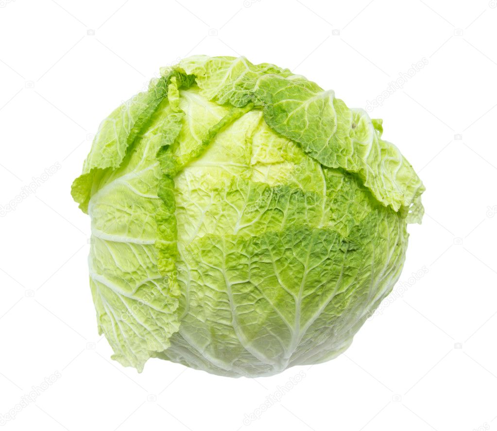 Chinese cabbage on white background — Stock Photo #11836932