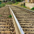 Stock Photo: Railroad tracks vanishing into forest area