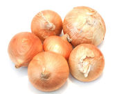 Five ripe onions on a white background — Stock Photo