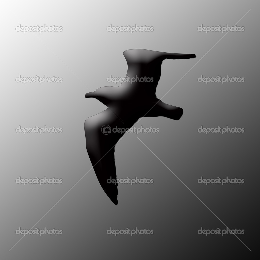 Silhouette of the sea gull — Stock Photo #11929967