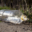 Plastic bottle on the nature - Stock Photo
