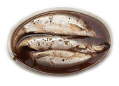 Spicy salted herring on a white background — Stock Photo