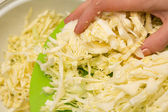 Cutting cabbage — Stock Photo