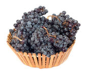 Black grapes in a basket on a white background — Stock Photo