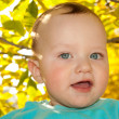 Portrait of a baby on the background of the fall — Stock Photo