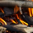 Young birch branch in fire - Stock Photo