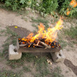 Fire in a brazier on the background of green forest — Stock Photo #12190758