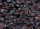 Closeup of raisins. — Stockfoto