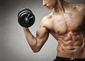 Fitnessstudio muskeln — Stockfoto