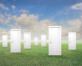 Doors in a Field — Stock Photo