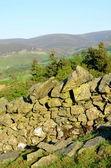 İskoç kırsal — Stok fotoğraf