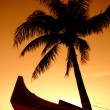 Tropical Sunset — Stock Photo #12402534
