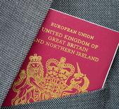 Business Travel Passport — Stock Photo