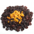 Raisin — Stock Photo #11908475
