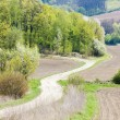 Spring landscape with fields in Southern Moravia, Czech Republic — Stock Photo