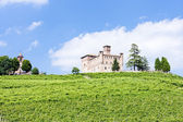 Grinzane Cavour Castle with vineyard, Piedmont, Italy — Stock Photo