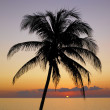 Stock Photo: Sunset over CaribbeSea, MarilGorda, Pinar del Rio Provinc