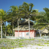 Cayo Coco, Cuba — Stock Photo