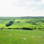 Sperrin Mountains, County Tyrone, Northern Ireland — Stock Photo