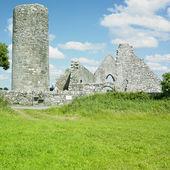 Ruins of Drumlane Monastery, County Cavan, Ireland — Stok fotoğraf