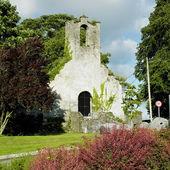 Kells, County Kilkenny, Ireland — Foto Stock