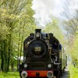 Steam train, Boekelo - Haaksbergen, Netherlands — Stock Photo