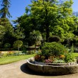 Garden, Coutances, Normandy, France — Stock Photo #10984977