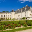 Stock Photo: Chateau de Breze, Pays-de-la-Loire, France