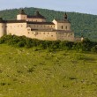 Stock Photo: KrasnHorkCastle, Slovakia