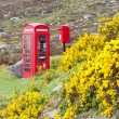 Telephone booth and letter box near Laid, Scotland — Stock Photo #10985956
