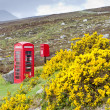 Telephone booth and letter box near Laid, Scotland — Stock Photo #10985963