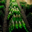 Wine archive, Hort Winery, Znojmo - Dobsice, Czech Republic — Stock Photo #10988516