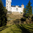 Royalty-Free Stock Photo: Castle Zleby, Czech Republic